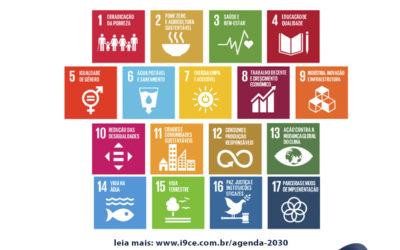 Agenda 2030: Qual o papel da sua empresa nesta iniciativa?