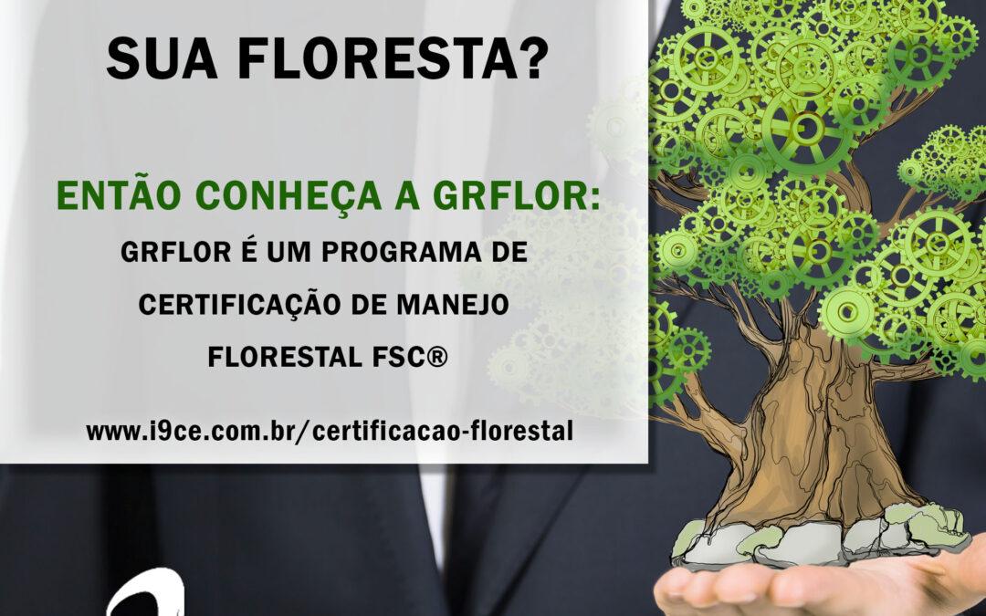 GRFLOR – Certificação de Manejo Florestal
