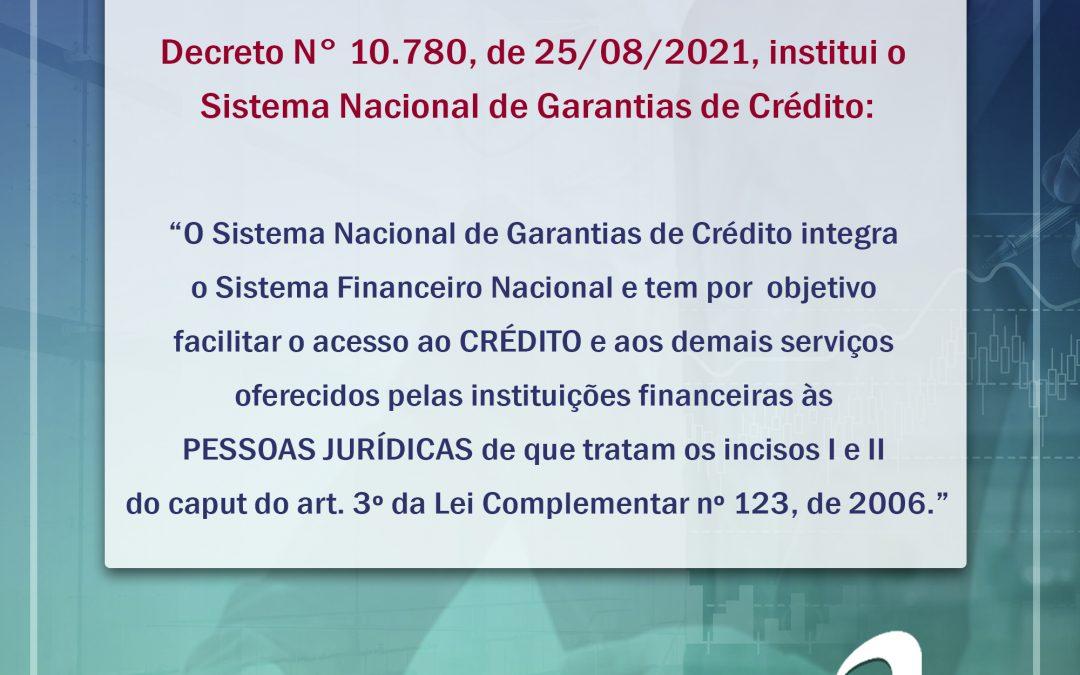 Notícia: Decreto Nº 10.780 – Institui o Sistema Nacional de Garantias de Crédito